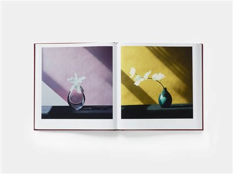 mapplethorpe flora the complete 0714871311 robert mapplethorpe mapplethorpe flora the complete flowers for sale artspace