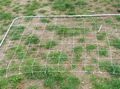 Trellis Netting Trellis Netting How To Easy To Build And Great For