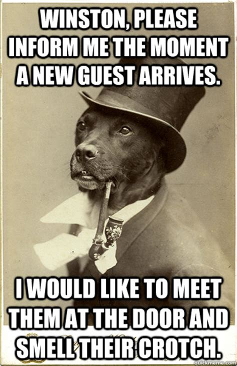 Benson Dog Meme - winston please inform me the moment a new guest arrives