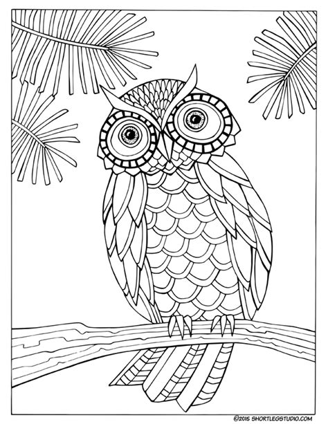color sheets flora and fauna coloring sheets leg studio