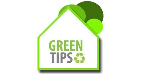 green eco tips for sustainable living