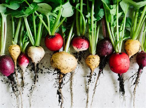 healthiest root vegetables 11 healthy food trends you need to in 2017 self