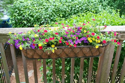 Deck Railing Flower Planters by Window Box Ideas 5 30 12 The Railing Planter On Back