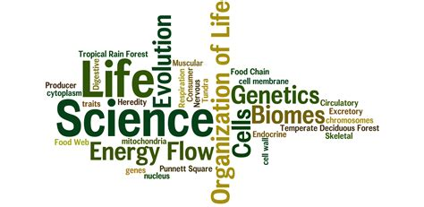 what is biography in science life science lessons tes teach