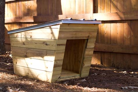 stylish dog houses moderndog dog house tiny home builders