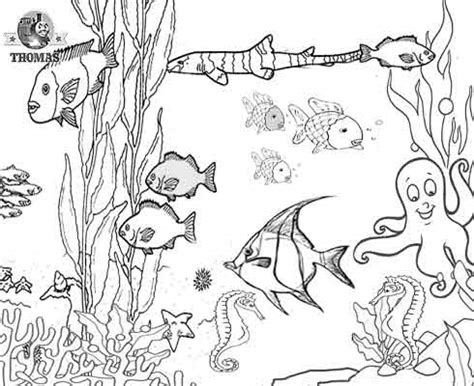 underwater sea life coloring pages free ocean printables