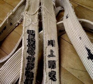 Blackbelt Kuro Obi 01 White the black belt myth what they never told you about being