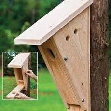 bluebird house pattern 1000 ideas about bird house plans on pinterest