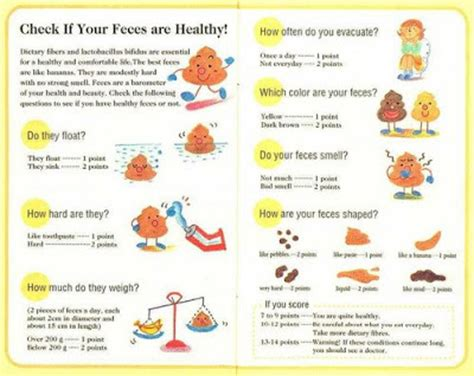 Healthy Stool Chart by Healthy Human Chart