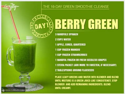Green Smoothie Detox Plan by Best 25 Smoothie Cleanse Ideas On Smoothie
