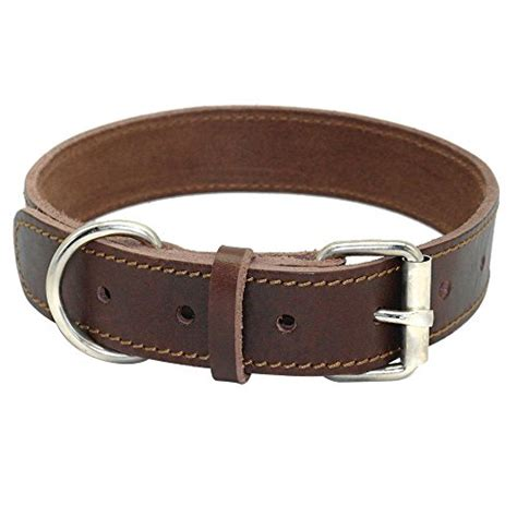 top 5 best leather collars for big dogs and medium breeds