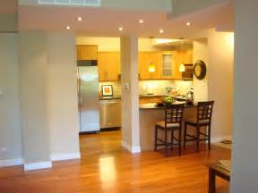 kitchen remodel ideas with diy project trellischicago condo kitchen ideas ideas pictures remodel and decor