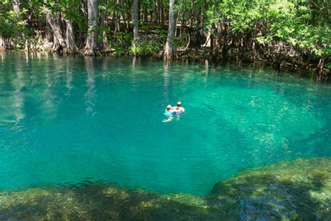 murdock springs and other places to explore books florida family vacations river citrus county