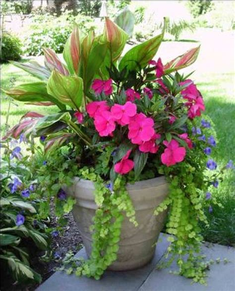 garden flower containers 1000 ideas about flowers garden on flower