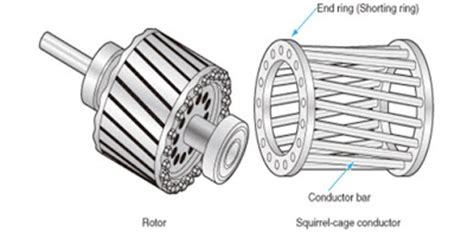 induction motor with squirrel cage rotor difference between squirrel cage and slip ring induction motor etrical