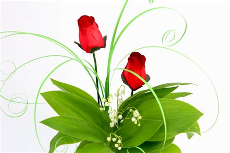 Muguet Fleurs Images by Muguet Fleur Photo Photo De Fleur Une Pensee Fleuriste