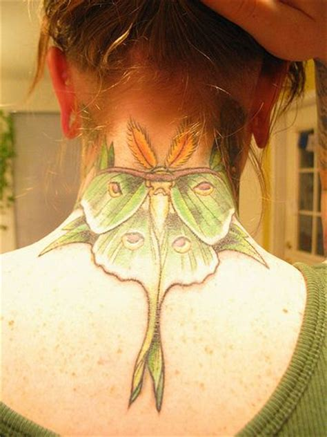 luna moth tattoo moth insect tattoos