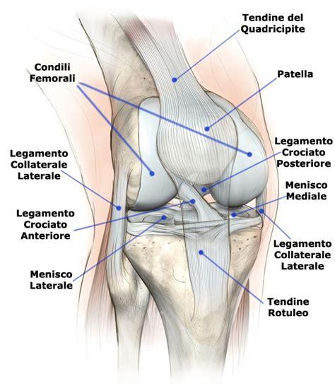 dolore al ginocchio interno lesione al menisco ginocchio mediale o laterale
