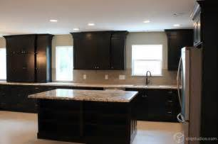 black kitchen cabinets traditional kitchen houston black and white kitchen cabinets contemporary kitchen