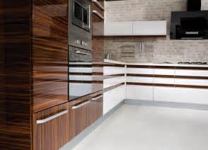 Gloss Kitchen Cabinet Doors High Gloss Kitchen Cabinets Kitchendecorate Net