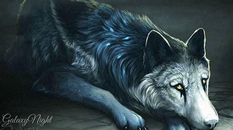 imagenes de anime wolves anime wolves driftwood heart youtube