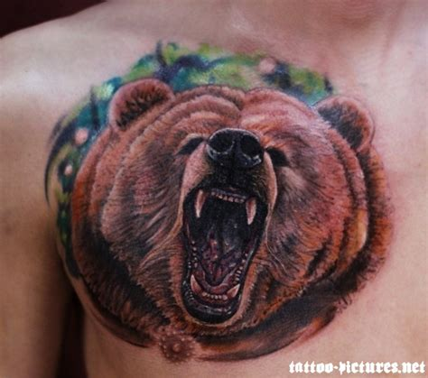 bear chest tattoo tattoos our top 15 grizzly designs
