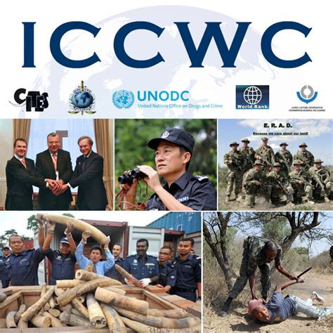 wildlife crime consortium to host high level events on