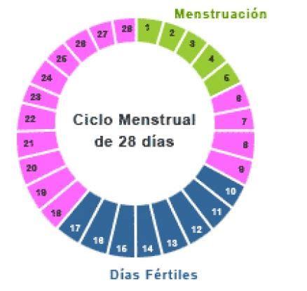 se puede salir embarazada con el periodo qu 233 d 237 as me puedo quedar embarazada blogmujeres
