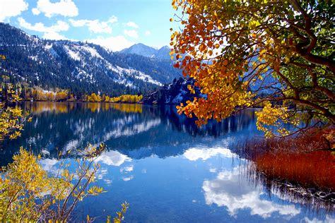 california fall colors gull lake california fall color