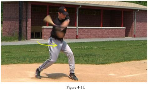 muscles used to swing a bat workouts for the hips and legs