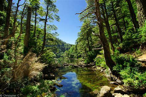 fotos animales zona sur de chile paisajes de chile imagenes de paisajes naturales hermosos