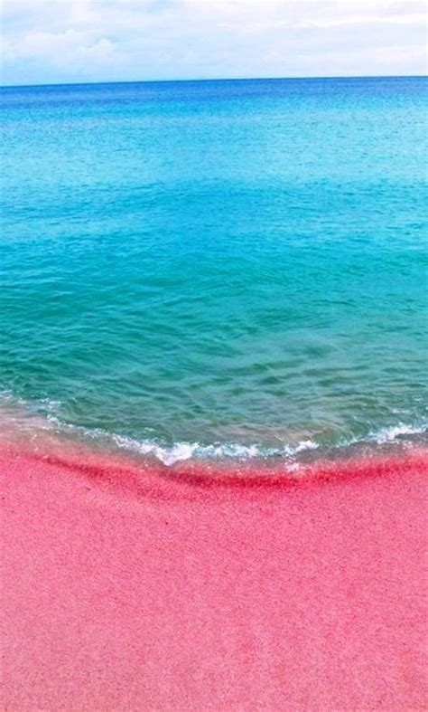 pink sand beach 25 best ideas about pink island on pinterest pink lake