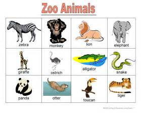 zoo animal books word cards and learning