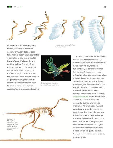 libro el origen de los nombres de los paises del mundo ciencias naturales 6to grado by rar 225 muri page 65 issuu