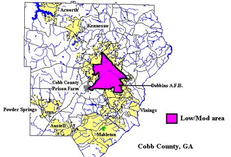 cobb county consolidated plan for 1995 executive summary