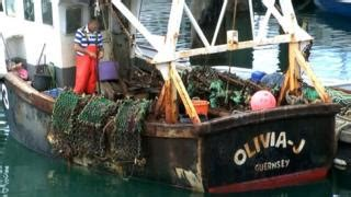 small boat licence uk guernsey trainee fishing scheme a total joke bbc news