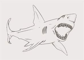 shark coloring book bull shark coloring page free coloring pages and