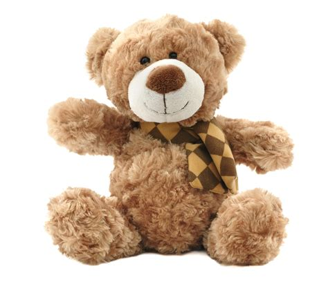 teddy bears things to do with
