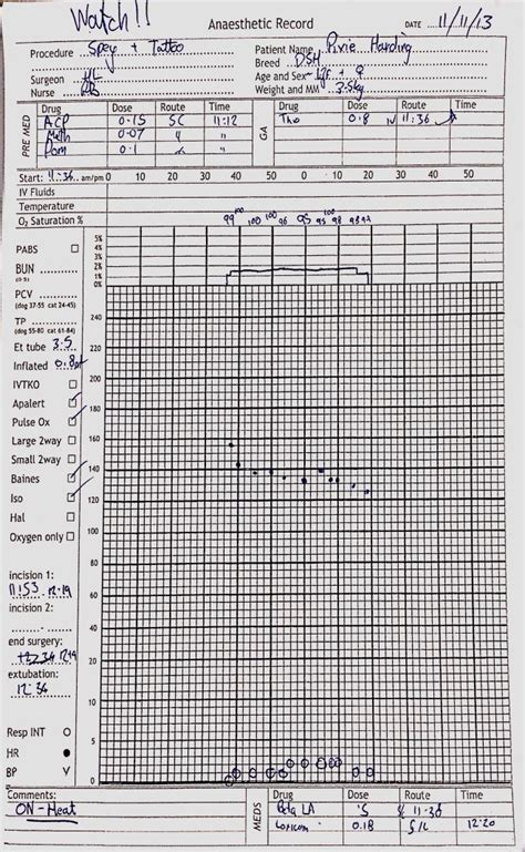 anesthesia record form template anesthesia record form template