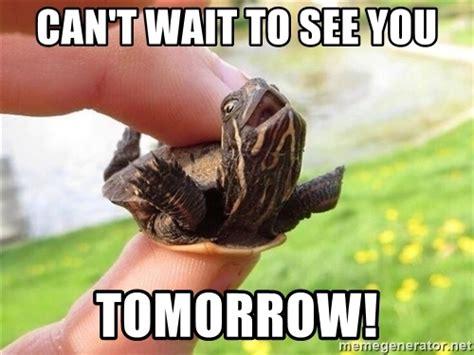 wait    tomorrow excited turtle meme