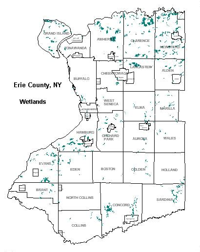 Erie County Ny Records Wetlands Erie County New York Government Home Page