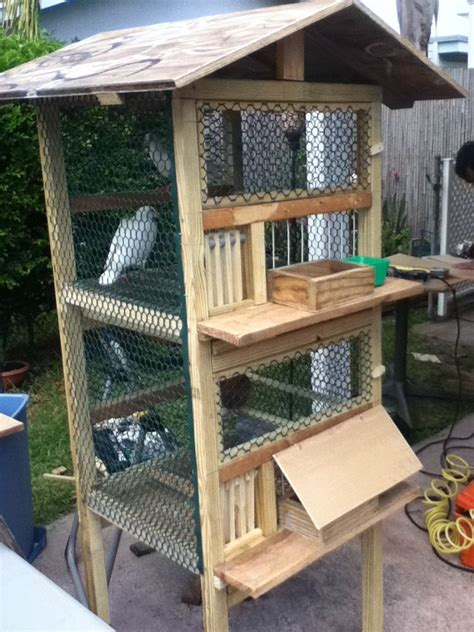 racing pigeon cage greendoeseverything