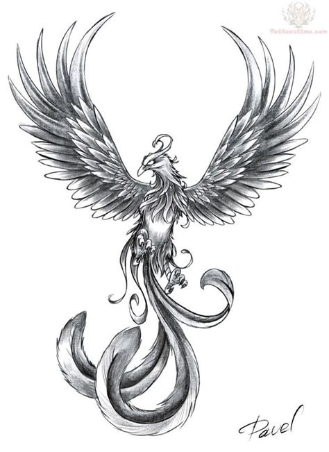 phoenix tattoo small the 12 best small bird images on