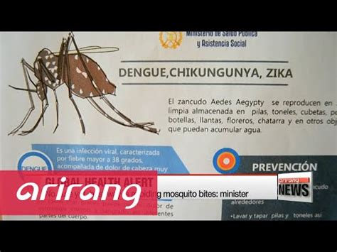 International Hair Emergency by Soros Gates Effect Zika Virus Outbreak An International
