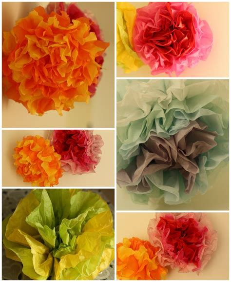 Craft Tissue Paper Flowers - 17 best images about garden flower activities for