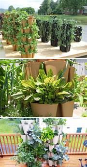 Indoor Vertical Vegetable Garden - 5 vertical vegetable garden ideas for beginners contemporist