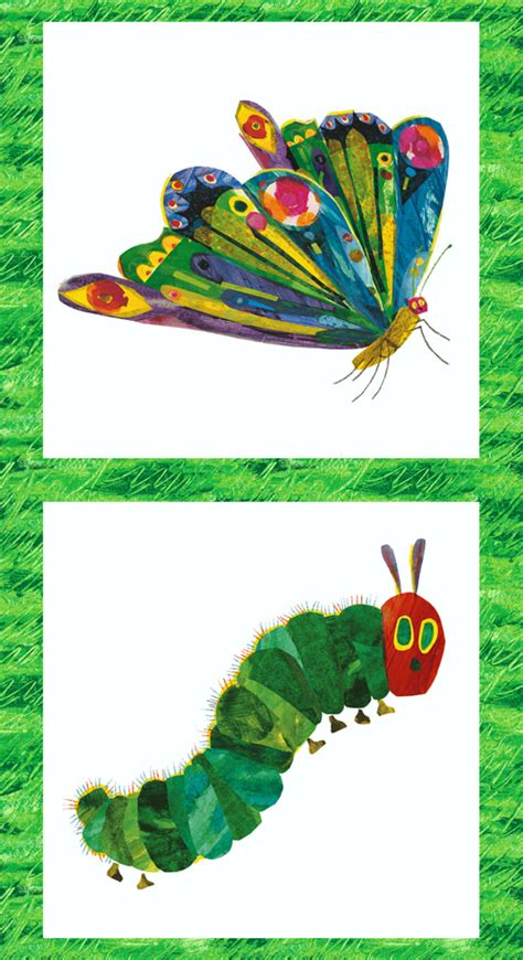 eric carle curtains the very hungry caterpillar encore
