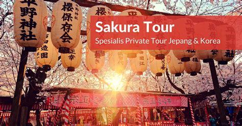 airbnb mata uang rupiah tour jepang dan korea terbaik dan termurah sakura tour