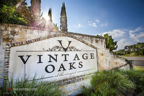 homes for sale in vintage oaks