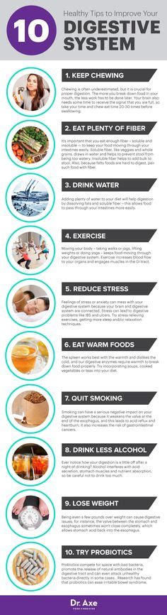 Digestive System Detox Diet Plan by The Secret To Looking Younger Forever